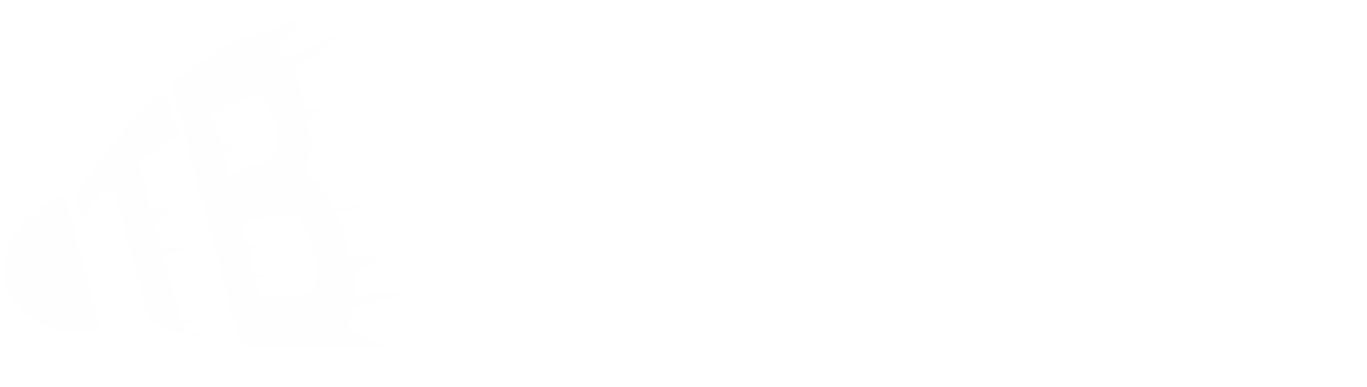 Training - TB Sinzheim Badminton